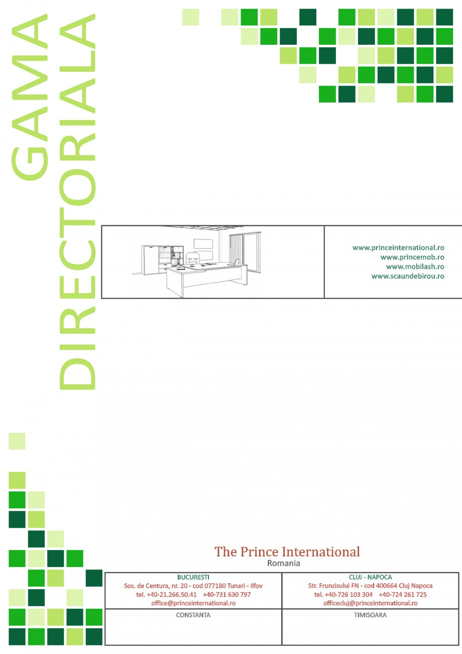 Catalog, brosura Mobilier pentru birouri - gama directoriala AMB 01, AMB 02, AMB 03, AMB 04, AMB 05, AMB 06, AMB 07, AMB 08, AMB 09, AMB 10, AMB 11, AMB 12, AMB 13, AMB 14, AMB 15, AMB 16, AMB 17, AMB 18 The Prince International Mobilier pentru birouri PRINCE INTERNATIONAL  - Pagina 12