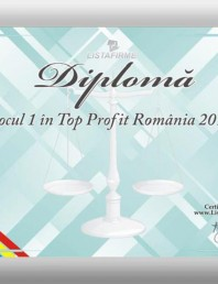 Locul 1 in Top Profit Romania 2010