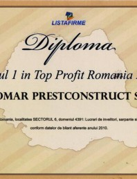 Locul 1 in Top Profit Romania 2011