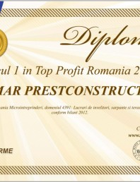 Locul 1 in Top Profit Romania 2013