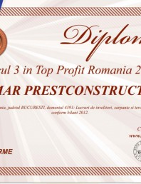 Locul 3 in Top Profit Romania 2013