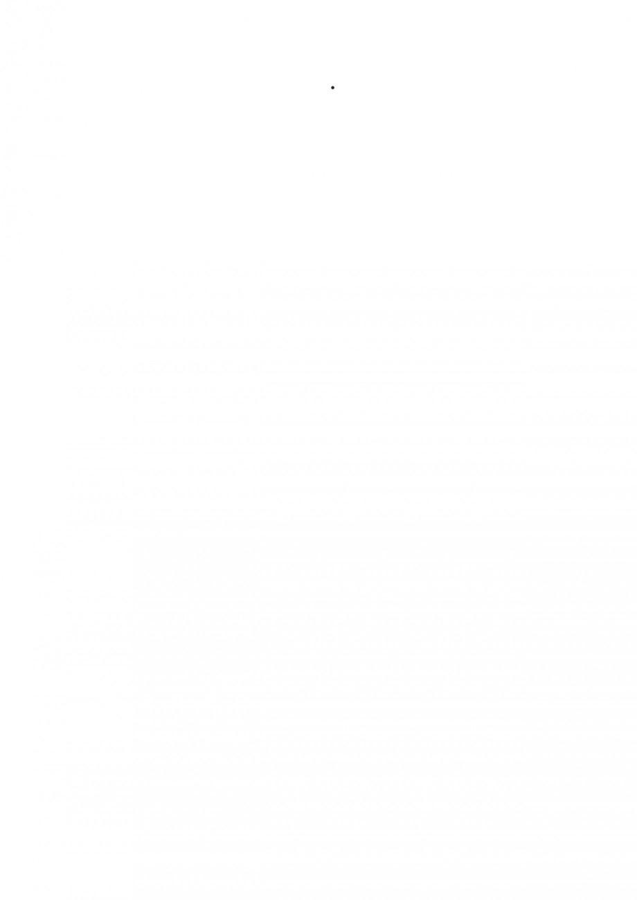 Pagina 40 - Fierastraie electrice - Manual utilizare STAYER S 110PE, JS 80 PE Instructiuni montaj,...