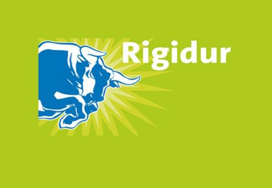 Sapa uscata din placi Rigidur Saint-Gobain Rigips