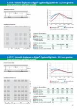 Varianta de placare cu Rigips® Gyptone Big Quattro 47 - 12,5 mm grosime - 4.07.36 RIGIPS
