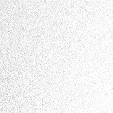 Prezentare produs Plafoane casetate RIGIPS - Poza 3