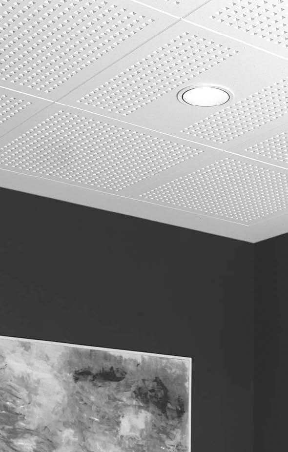 Plafoane casetate RIGIPS - Poza 29