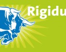 Pereti rezistenti la impact Rigidur RIGIPS