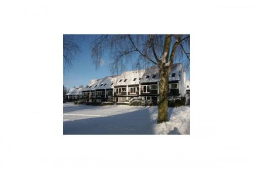Lucrari de referinta Parcul Soelleroed, case aliniate, DANEMARCA VELUX - Poza 7