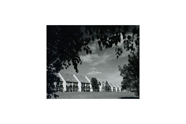 Parcul Soelleroed, case aliniate, DANEMARCA VELUX - Poza 5