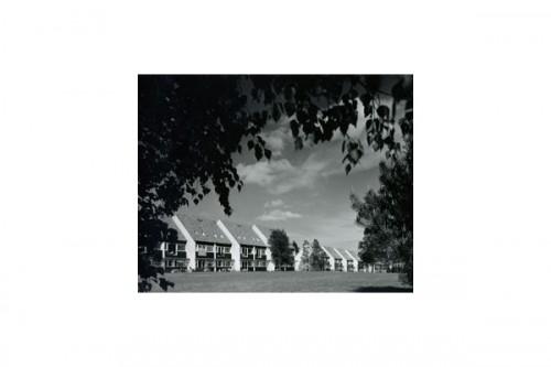Lucrari, proiecte Parcul Soelleroed, case aliniate, DANEMARCA VELUX - Poza 5