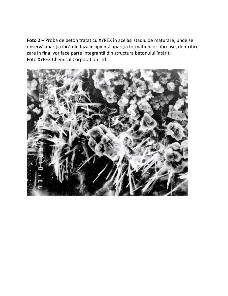 Pagina 2 - Fazele procesului de impermeabilizare XYPEX Instructiuni montaj, utilizare Romana � a...