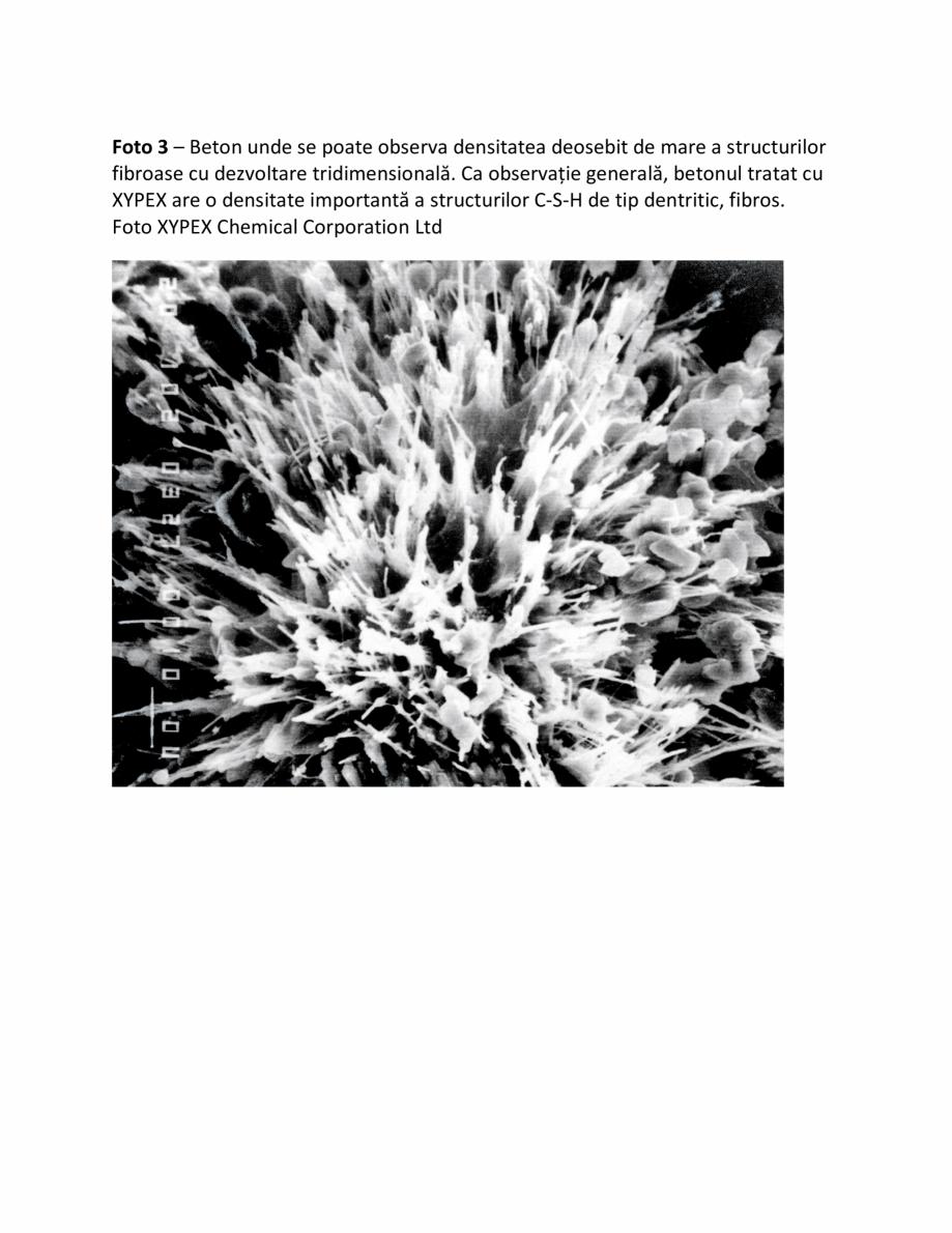 Pagina 3 - Fazele procesului de impermeabilizare XYPEX Instructiuni montaj, utilizare Romana
