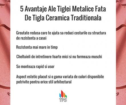 Prezentare produs Tabla metalica TPS - Poza 11