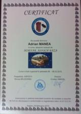 Certificat hornar Adrian Manea