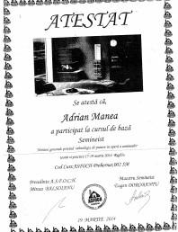 Atestat seminist Adrian Manea