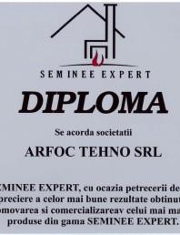 Diploma Seminee Expert