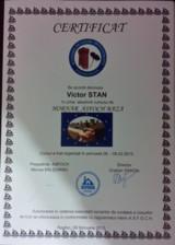 Certificat hornar Victor Stan ARFOC TEHNO