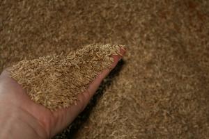 Seminte de gazon Toate soiurile de seminte de gazon Gazonul Brasov provin din programe de cercetare bine organizate si testate in centre specializate, independente, care au validat calitatea acestora.