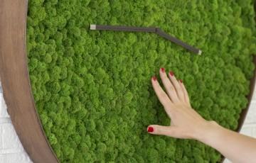 Pereti cu licheni decorativi Panourile cu licheni confera incaperii in care acestea sunt montate un aer de relaxare, bunastare si meditatie. Acest perete vegetal nu necesita sistem de irigare, fertilizare, cosmetizare.