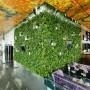Amenajare pereti verzi si gradini verticale