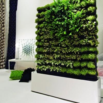 homeco Amenajare pereti verzi si gradini verticale - Pereti verzi si gradini verticale homeco