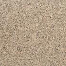 Maro - Dale din beton - Corona Brillant