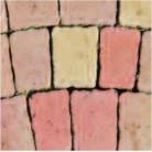 Frunzis de toamna - Pavaj din beton - Palio
