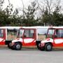 Autoutilitare electrice ecologice - modelul 391-rosu si alb