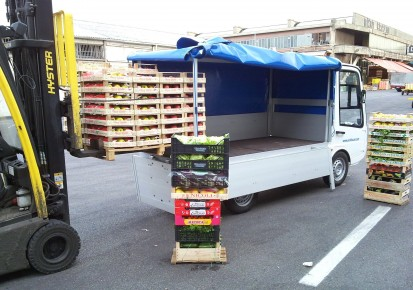 Esagono Energia - Pick-up with rack & canvas PICK-UP GASTONE Autoutilitare electrice ecologice