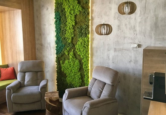 Pereti verzi cu licheni si muschi decorativi AERO PLANT