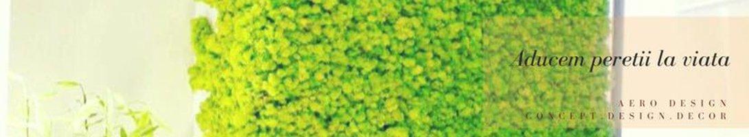 AERO PLANT