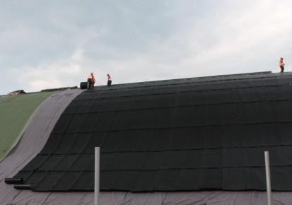 Centrul de Agrement Trotus cu acoperis verde ultrausor 12 Acoperis verde extensiv ultrausor Centrul de Agrement