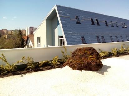 Terasa verde intensiva_18 Acoperis verde intensiv tip gradina Terasa verde intensiva - complex rezidential Neorama Brasov