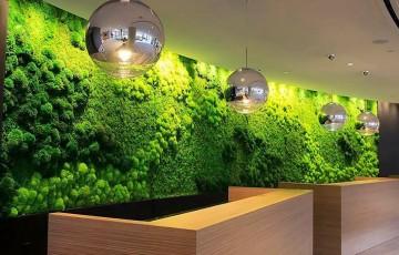 Pereti si fatade verzi Pereti si fatade verzi ODU GREEN ROOF acoperiti cu aranjamente de licheni, muschi, scoarta de copac care pot deveni un element decorativ impunator in orice design.