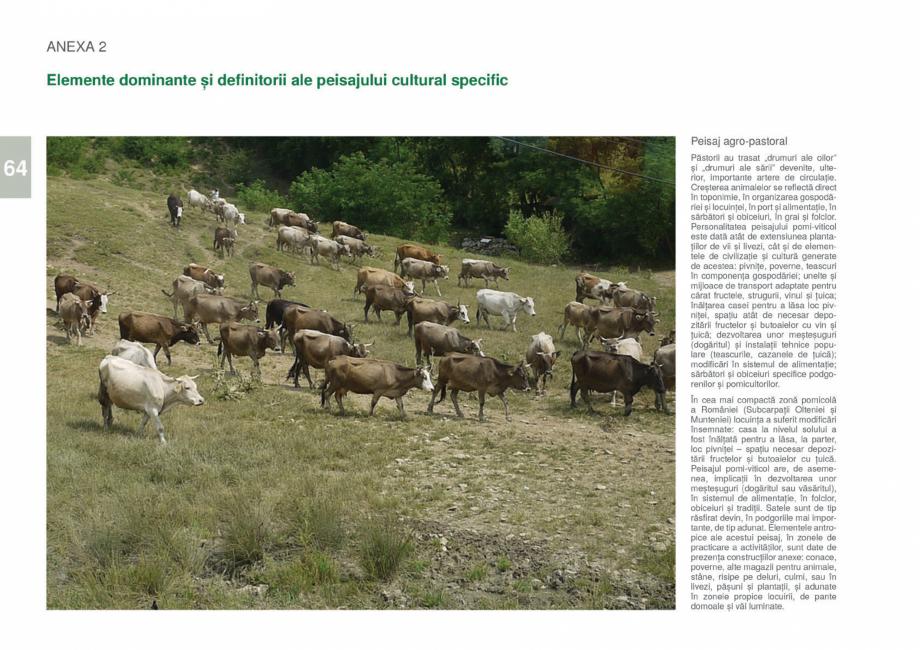 Pagina 66 - Zona Gorj - Ghid de arhitectura pentru incadrarea in specificul local din mediul rural  ...