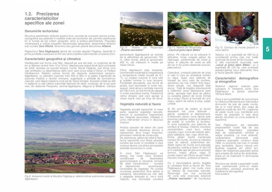 Pagina 7 - Zona Tara Fagarasului - Ghid de arhitectura pentru incadrarea in specificul local din...