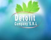 DETOLIT COMPANY