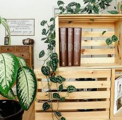 Cutii decorative de depozitare Ladite.ro