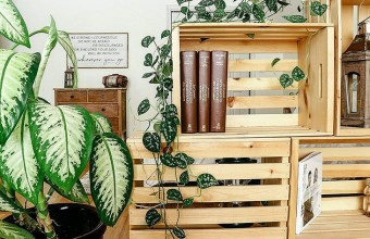 Cutii decorative de depozitare