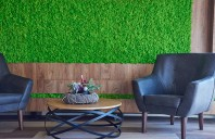 Pereti verzi cu licheni si muschi decorativi Urbanature