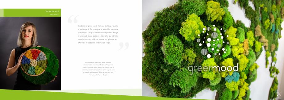 Pagina 4 - Prezentare generala pentru pereti vegetali cu licheni, muschi sau plante stabilizate ...