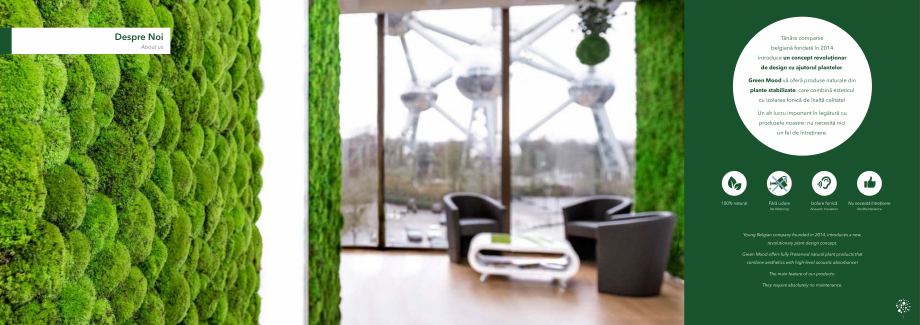 Pagina 5 - Prezentare generala pentru pereti vegetali cu licheni, muschi sau plante stabilizate ...