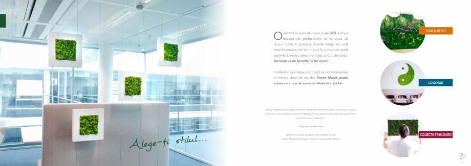Pagina 6 - Prezentare generala pentru pereti vegetali cu licheni, muschi sau plante stabilizate ...