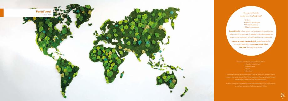 Pagina 7 - Prezentare generala pentru pereti vegetali cu licheni, muschi sau plante stabilizate ...