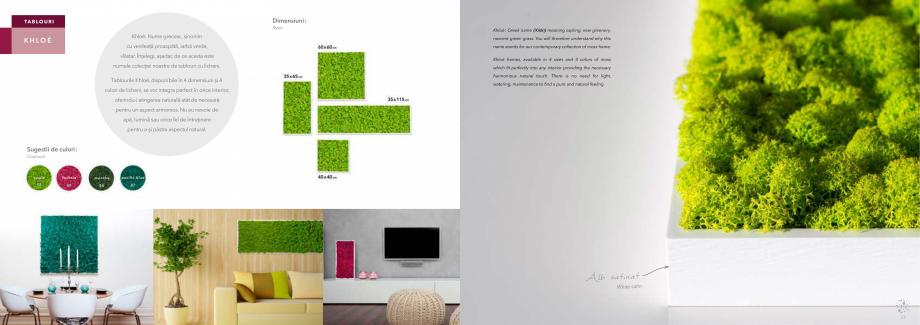 Pagina 20 - Prezentare generala pentru pereti vegetali cu licheni, muschi sau plante stabilizate ...