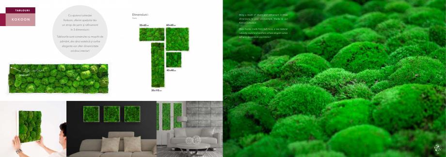 Pagina 21 - Prezentare generala pentru pereti vegetali cu licheni, muschi sau plante stabilizate ...