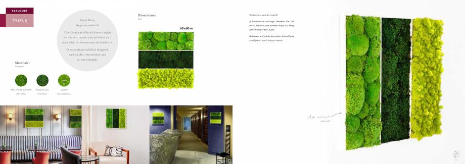 Pagina 22 - Prezentare generala pentru pereti vegetali cu licheni, muschi sau plante stabilizate ...