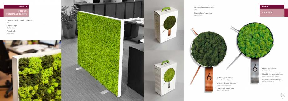 Pagina 24 - Prezentare generala pentru pereti vegetali cu licheni, muschi sau plante stabilizate ...