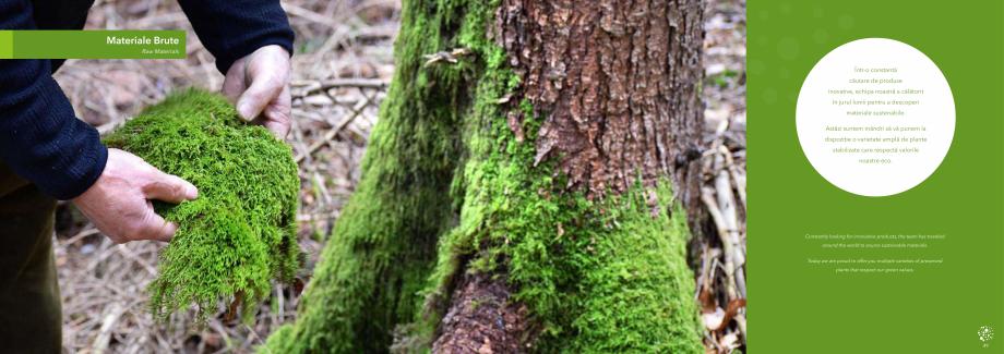 Pagina 26 - Prezentare generala pentru pereti vegetali cu licheni, muschi sau plante stabilizate ...