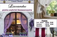 Servicii de curatare perdele si draperii Lavandu va asteapta sa aduceti la curatat, spalat, calcat, croit, cusut, perdelele si draperiile din caminul vostru!